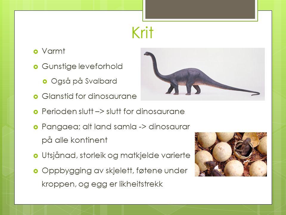 Krit  Varmt  Gunstige leveforhold  Også på Svalbard  Glanstid for dinosaurane  Perioden slutt –> slutt for dinosaurane  Pangaea; alt land samla -> dinosaurar på alle kontinent  Utsjånad, storleik og matkjelde varierte  Oppbygging av skjelett, føtene under kroppen, og egg er likheitstrekk