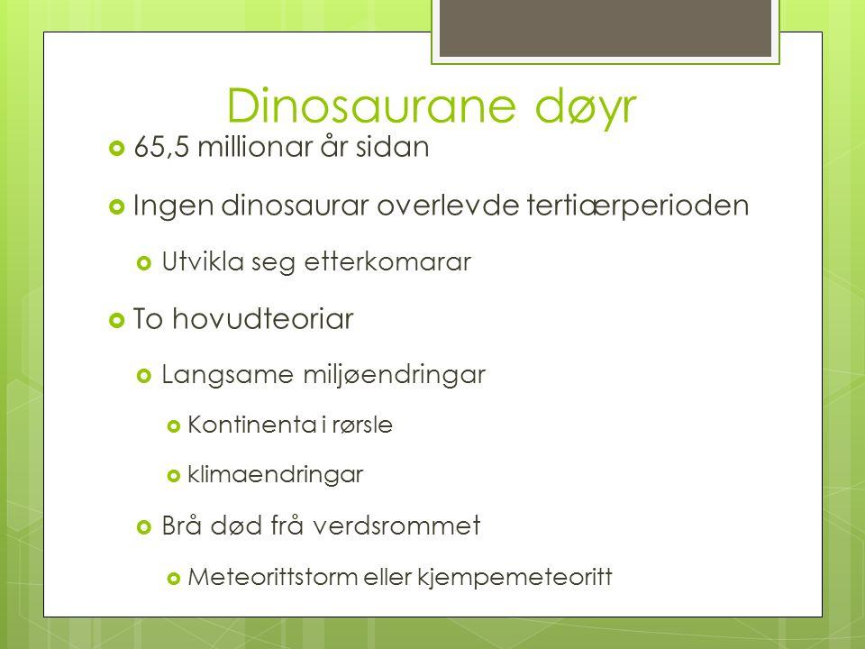 Dinosaurane døyr  65,5 millionar år sidan  Ingen dinosaurar overlevde tertiærperioden  Utvikla seg etterkomarar  To hovudteoriar  Langsame miljøendringar  Kontinenta i rørsle  klimaendringar  Brå død frå verdsrommet  Meteorittstorm eller kjempemeteoritt