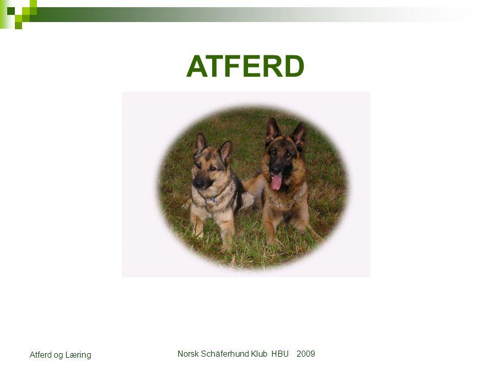 Norsk Schäferhund Klub HBU 2009 Atferd og Læring ATFERD