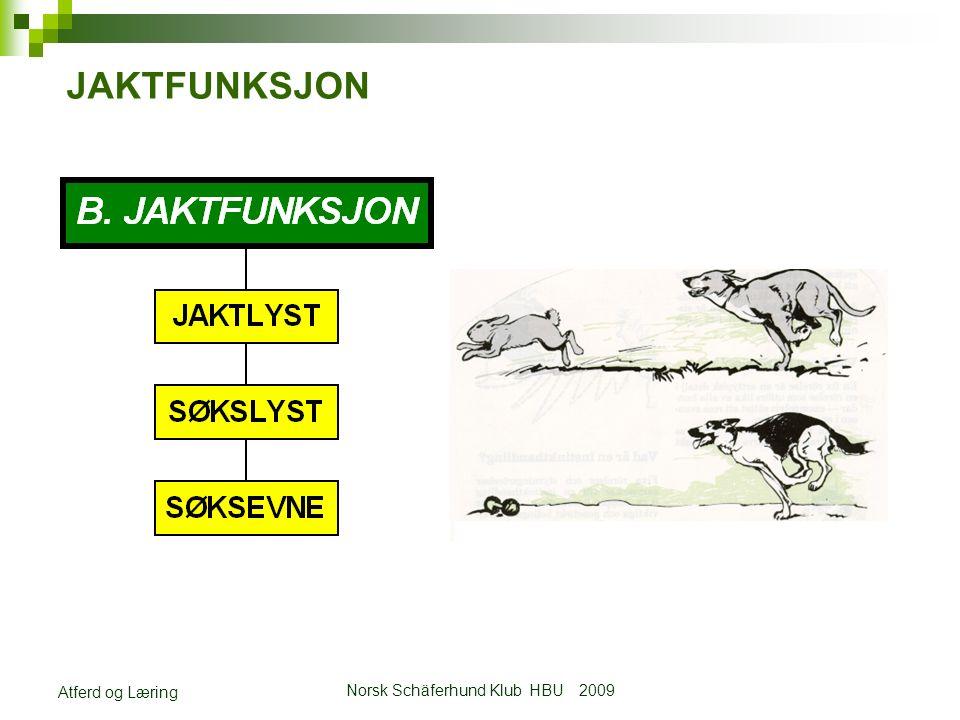 Norsk Schäferhund Klub HBU 2009 Atferd og Læring JAKTFUNKSJON