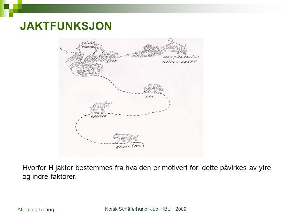 Norsk Schäferhund Klub HBU 2009 Atferd og Læring JAKTFUNKSJON Hvorfor H jakter bestemmes fra hva den er motivert for, dette påvirkes av ytre og indre faktorer.