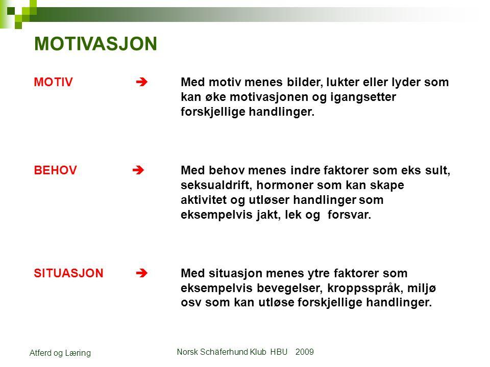 Norsk Schäferhund Klub HBU 2009 Atferd og Læring MOTIVASJON MOTIV  Med motiv menes bilder, lukter eller lyder som kan øke motivasjonen og igangsetter forskjellige handlinger.