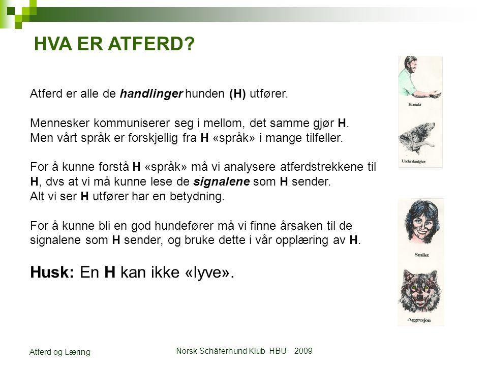 Norsk Schäferhund Klub HBU 2009 Atferd og Læring Atferd er alle de handlinger hunden (H) utfører.