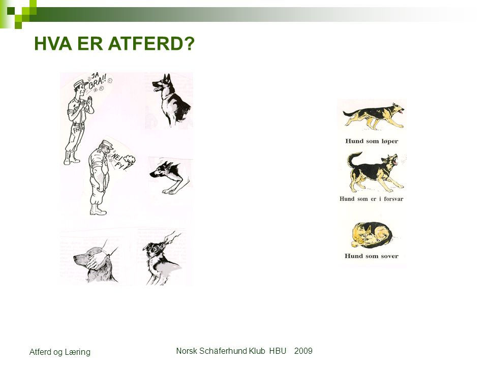 Norsk Schäferhund Klub HBU 2009 Atferd og Læring ØVELSESLÆRE Opplæringen av hund inndeles i 8 spørsmålsstillinger.