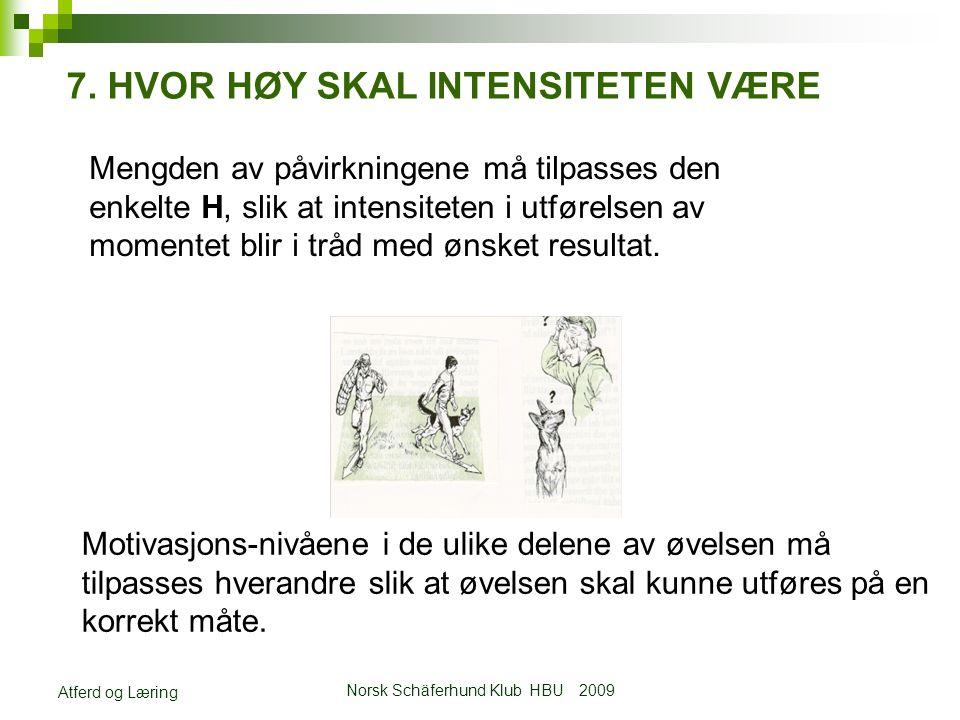 Norsk Schäferhund Klub HBU 2009 Atferd og Læring 7.