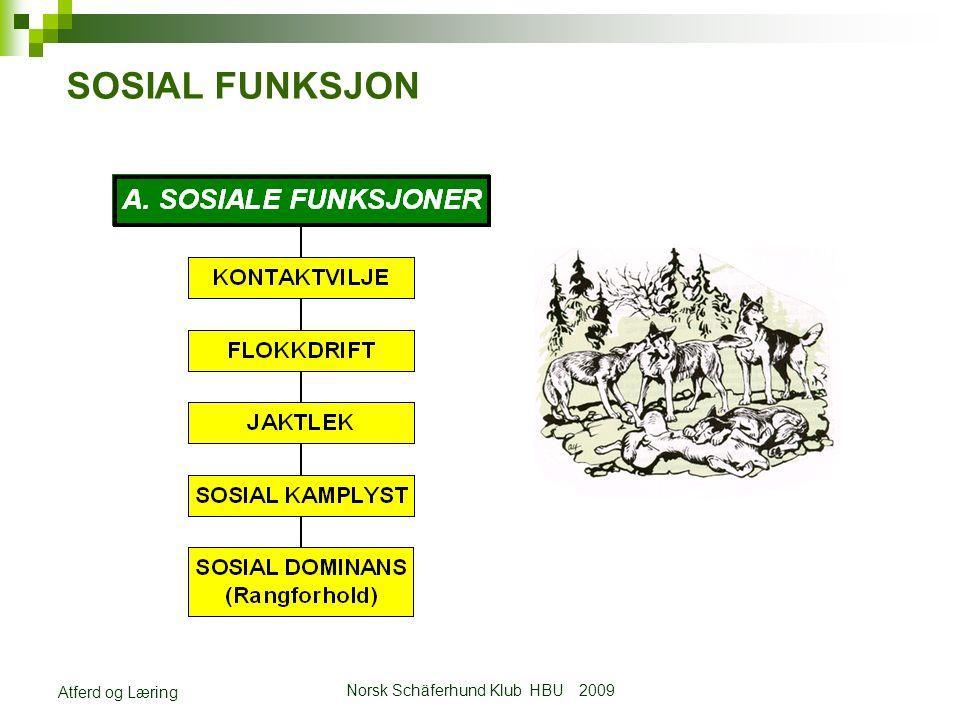 Norsk Schäferhund Klub HBU 2009 Atferd og Læring SOSIAL FUNKSJON