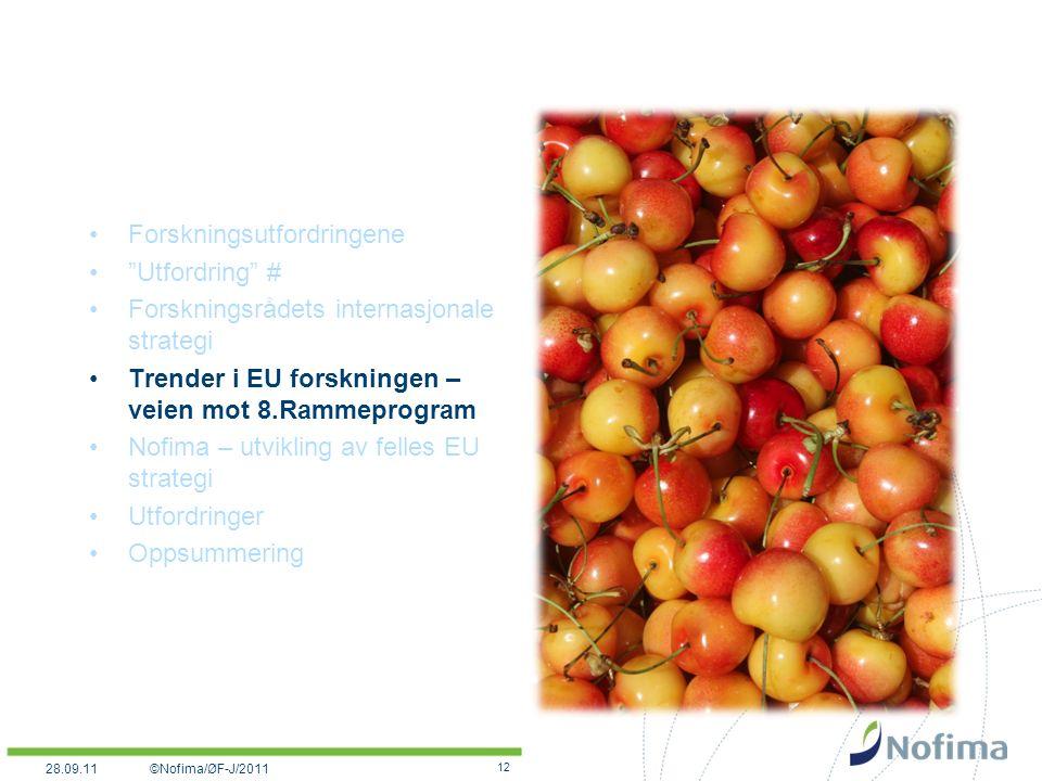 Forskningsutfordringene Utfordring # Forskningsrådets internasjonale strategi Trender i EU forskningen – veien mot 8.Rammeprogram Nofima – utvikling av felles EU strategi Utfordringer Oppsummering 12 ©Nofima/ØF-J/201128.09.11