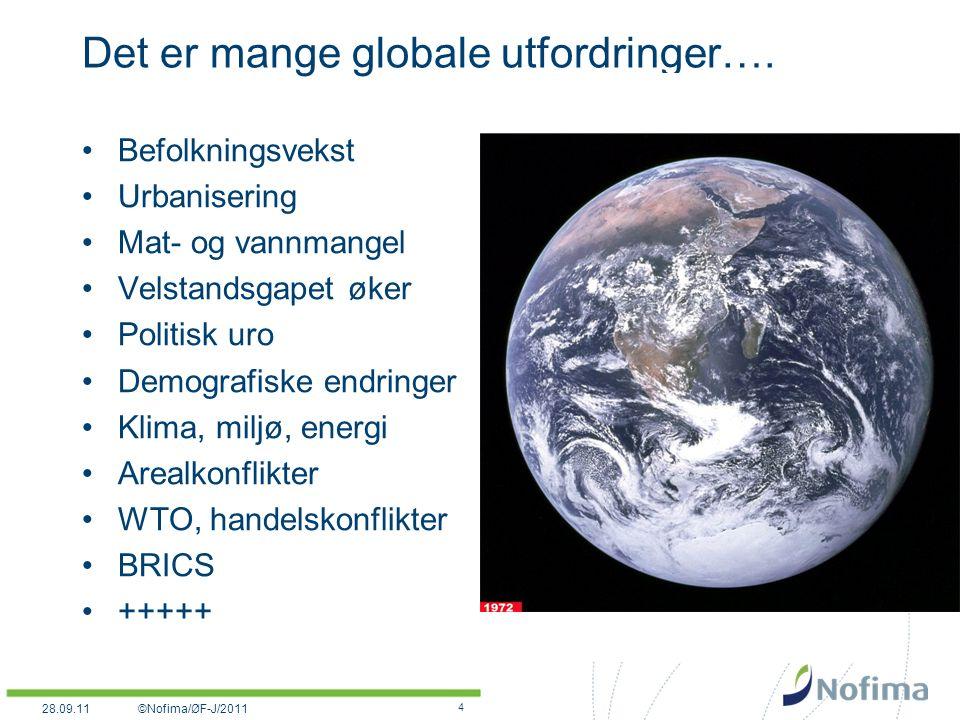 Det er mange globale utfordringer….