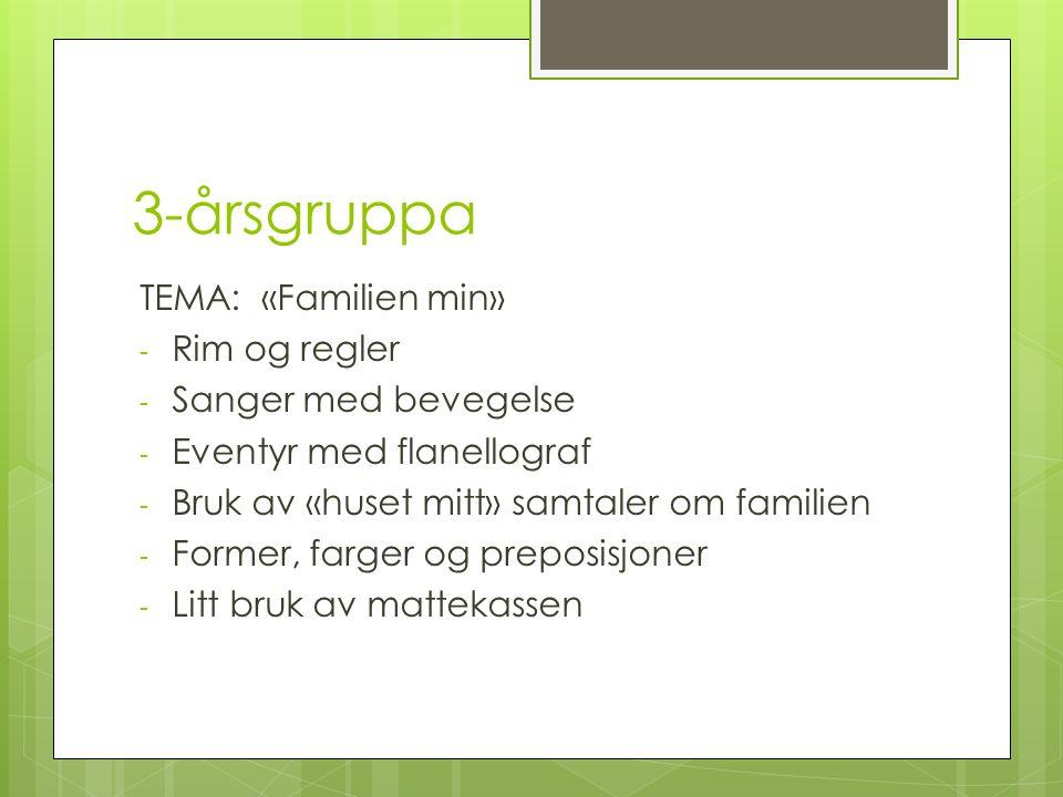 3-årsgruppa TEMA: «Familien min» - Rim og regler - Sanger med bevegelse - Eventyr med flanellograf - Bruk av «huset mitt» samtaler om familien - Former, farger og preposisjoner - Litt bruk av mattekassen