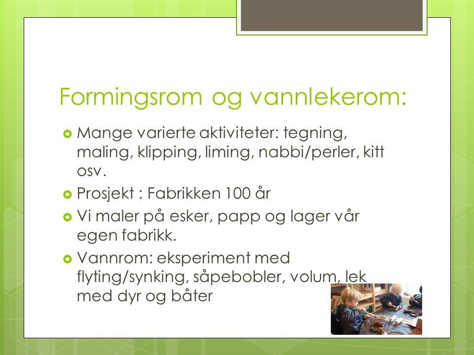 Formingsrom og vannlekerom:  Mange varierte aktiviteter: tegning, maling, klipping, liming, nabbi/perler, kitt osv.