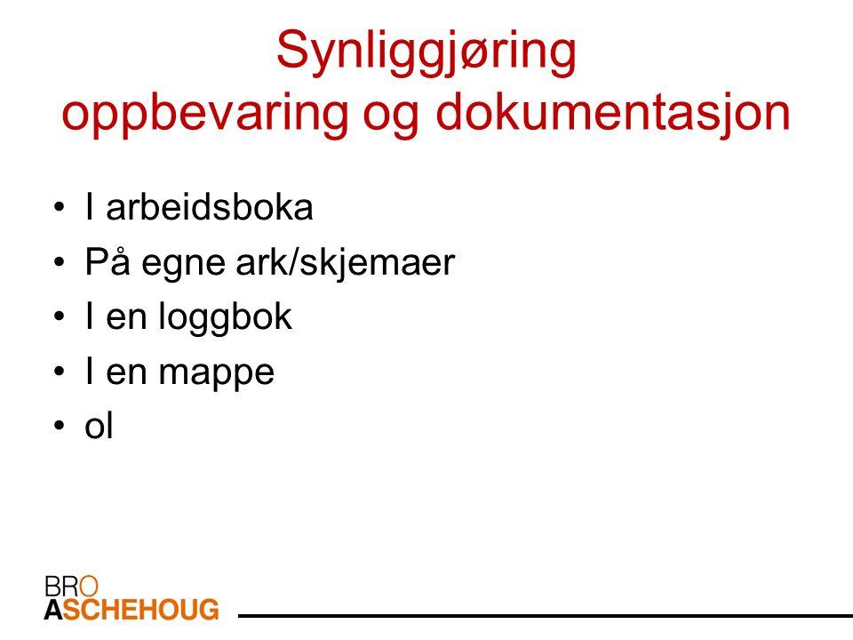 Synliggjøring oppbevaring og dokumentasjon I arbeidsboka På egne ark/skjemaer I en loggbok I en mappe ol