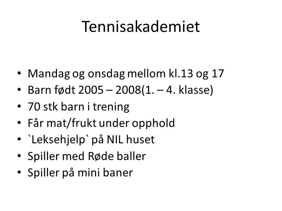 Aldersansvarlig Valg av en foreldrerepresentant til: Tennisskolen og Konkurransegruppen Oppgaver: Arrangere pizzakveld, tur, kino, double turnering m.