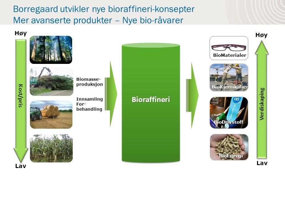 Borregaard utvikler nye bioraffineri-konsepter Mer avanserte produkter – Nye bio-råvarer Biomasse- produksjon Innsamling For- behandling BioKjemikalier BioDrivstoff BioEnergi Kost/pris Lav Høy Verdiskaping Lav Høy BioraffineriBioraffineri BioMaterialer