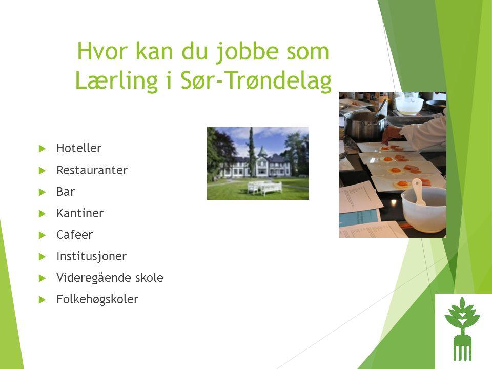 Hvor kan du jobbe som Lærling i Sør-Trøndelag  Hoteller  Restauranter  Bar  Kantiner  Cafeer  Institusjoner  Videregående skole  Folkehøgskoler