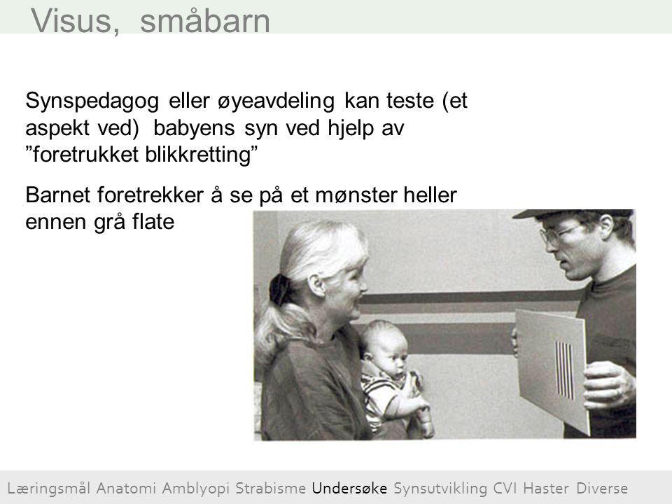 """Visus, småbarn Synspedagog eller øyeavdeling kan teste (et aspekt ved) babyens syn ved hjelp av """"foretrukket blikkretting"""" Barnet foretrekker å se på"""