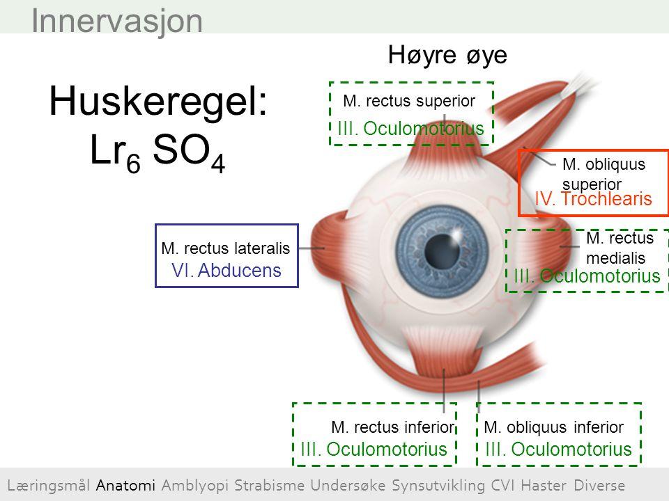 Visus, småbarn Hvis barnet reagerer negativt / asymmetriskt ved tildekking av det ene øyet kan det bero på at synet er dårlig på det ikke tildekkede øyet.