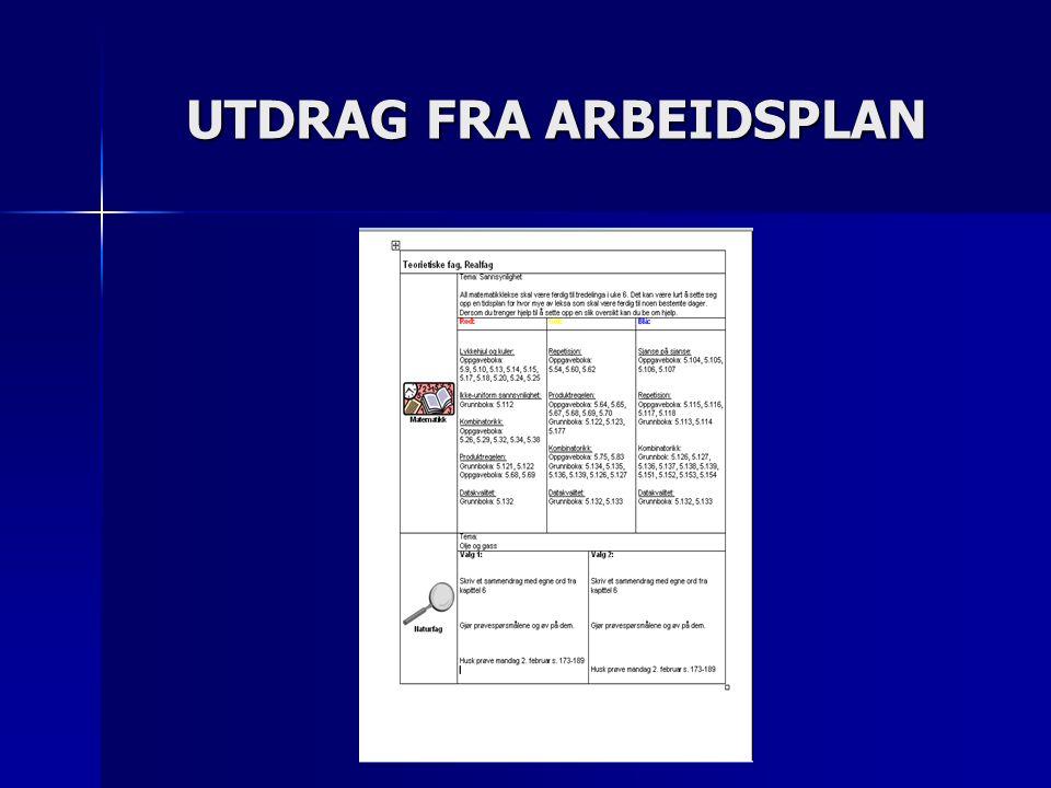 UTDRAG FRA ARBEIDSPLAN