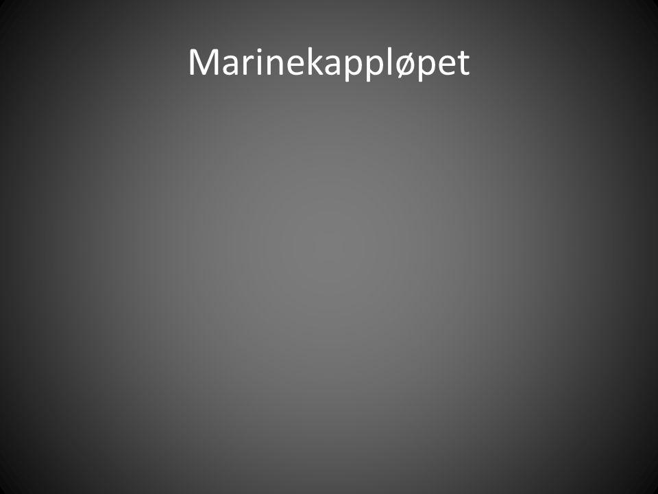 Marinekappløpet