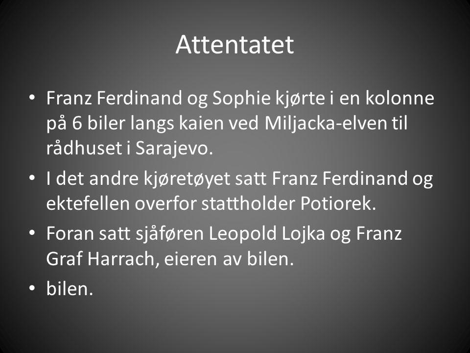 Attentatet Franz Ferdinand og Sophie kjørte i en kolonne på 6 biler langs kaien ved Miljacka-elven til rådhuset i Sarajevo.