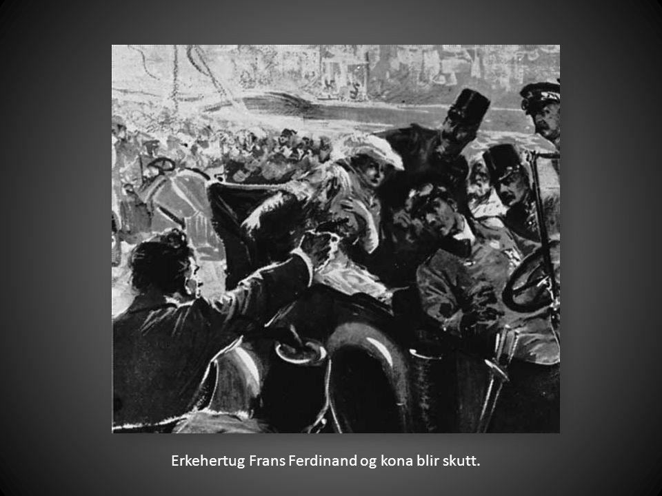 Erkehertug Frans Ferdinand og kona blir skutt.