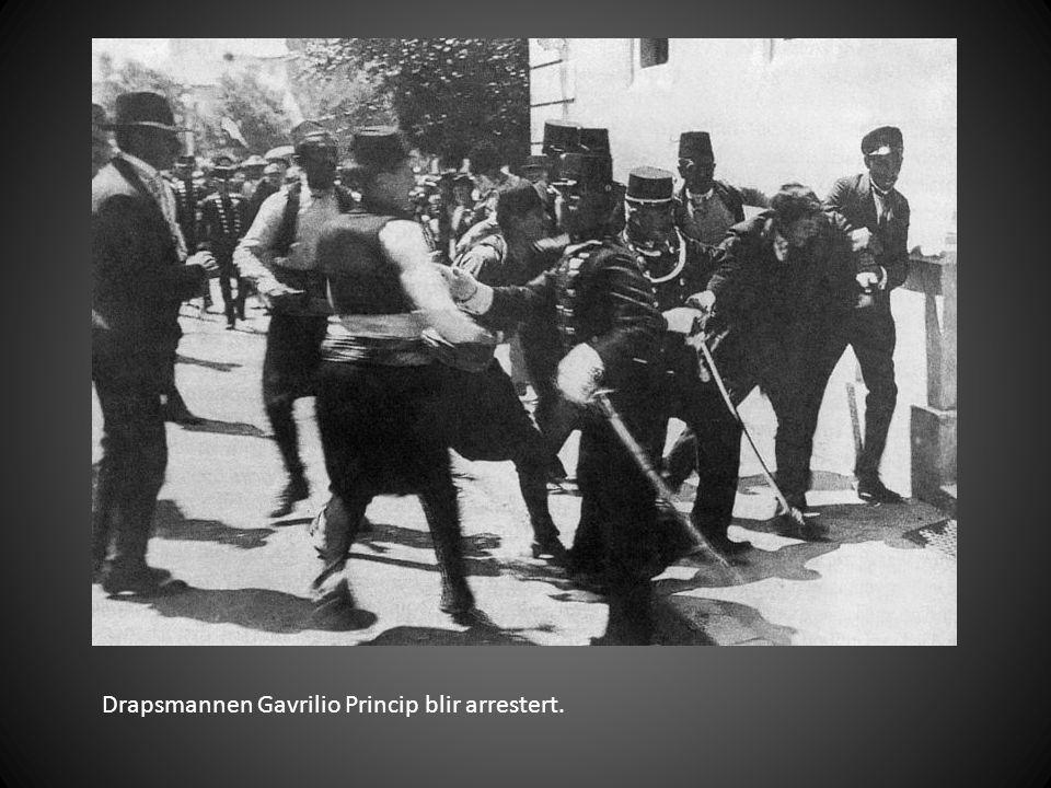 Drapsmannen Gavrilio Princip blir arrestert.
