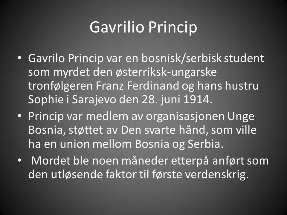 Gavrilio Princip Gavrilo Princip var en bosnisk/serbisk student som myrdet den østerriksk-ungarske tronfølgeren Franz Ferdinand og hans hustru Sophie i Sarajevo den 28.