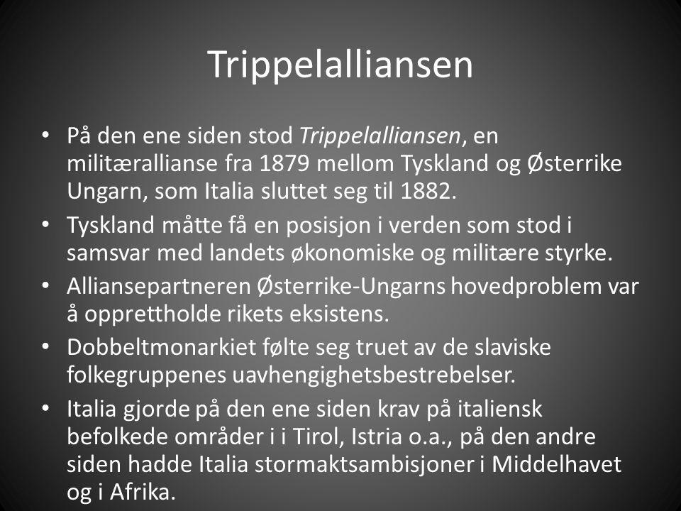Trippelalliansen På den ene siden stod Trippelalliansen, en militærallianse fra 1879 mellom Tyskland og Østerrike Ungarn, som Italia sluttet seg til 1882.