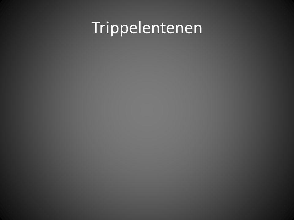 Trippelentenen