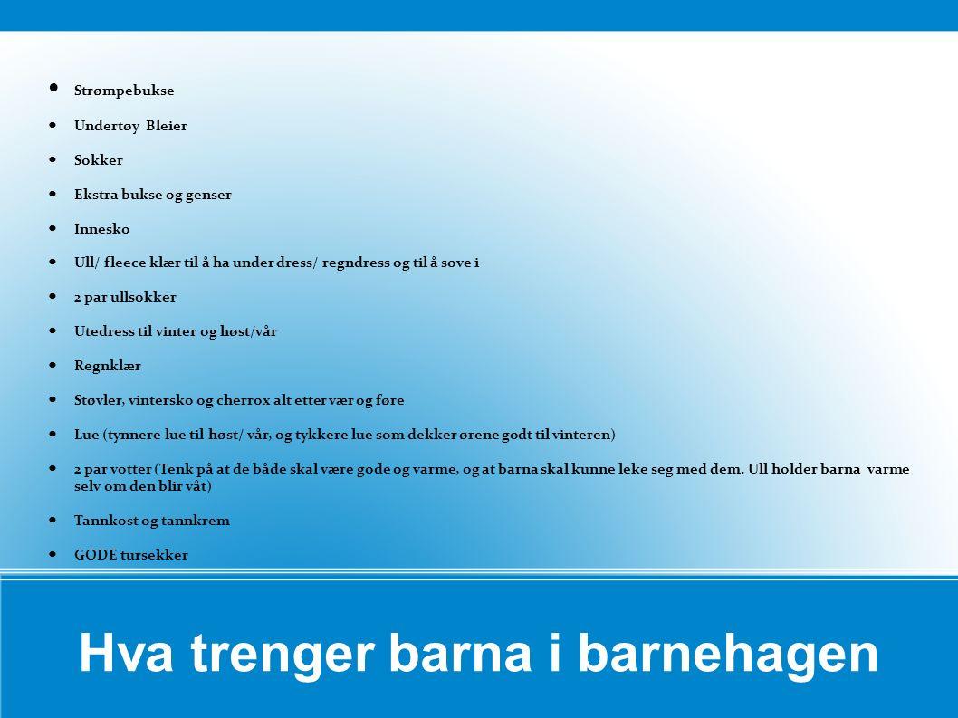 Hva trenger barna i barnehagen Strømpebukse Undertøy Bleier Sokker Ekstra bukse og genser Innesko Ull/ fleece klær til å ha under dress/ regndress og