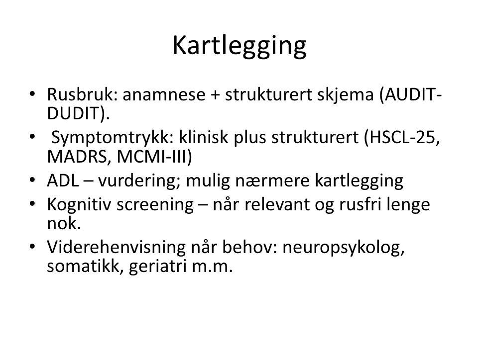 Kartlegging Rusbruk: anamnese + strukturert skjema (AUDIT- DUDIT).