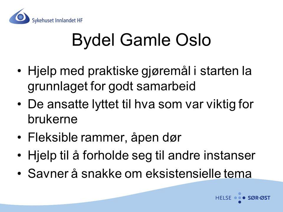Bydel Gamle Oslo Hjelp med praktiske gjøremål i starten la grunnlaget for godt samarbeid De ansatte lyttet til hva som var viktig for brukerne Fleksible rammer, åpen dør Hjelp til å forholde seg til andre instanser Savner å snakke om eksistensielle tema