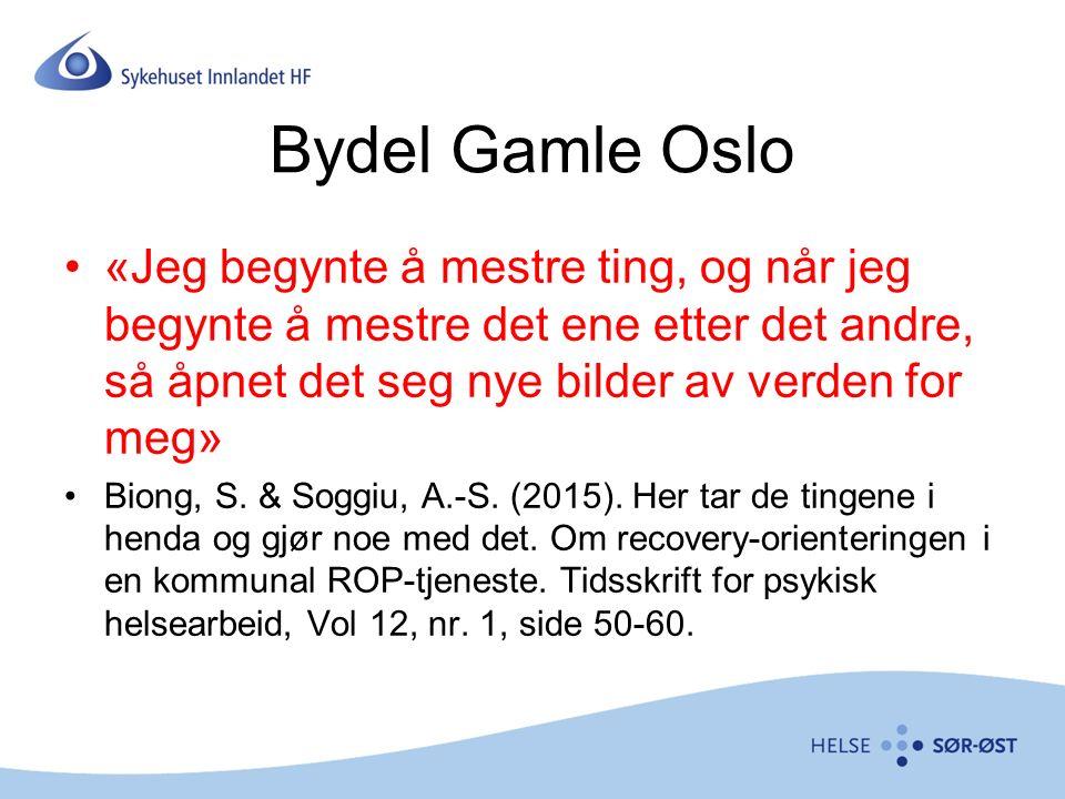 Bydel Gamle Oslo «Jeg begynte å mestre ting, og når jeg begynte å mestre det ene etter det andre, så åpnet det seg nye bilder av verden for meg» Biong, S.