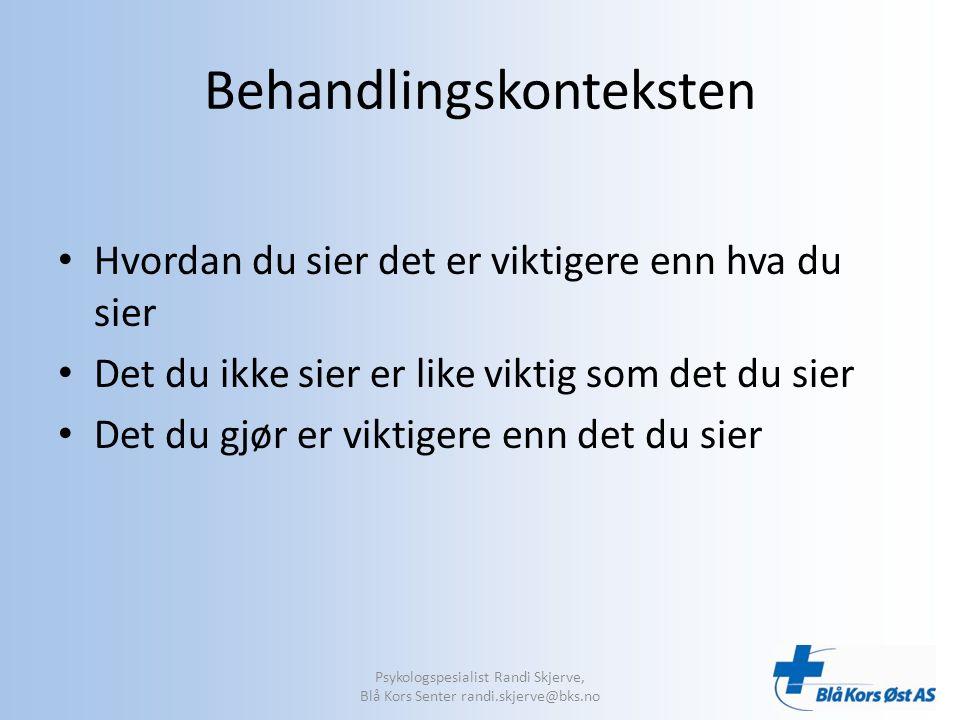 Problemforståelse Hvordan pasienten oppfatter sitt problem har betydning for behandlingen Psykologspesialist Randi Skjerve, Blå Kors Senter randi.skjerve@bks.no
