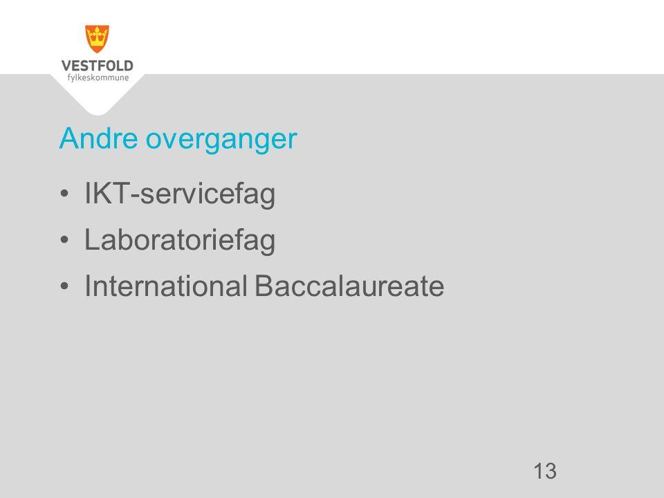 IKT-servicefag Laboratoriefag International Baccalaureate Andre overganger 13