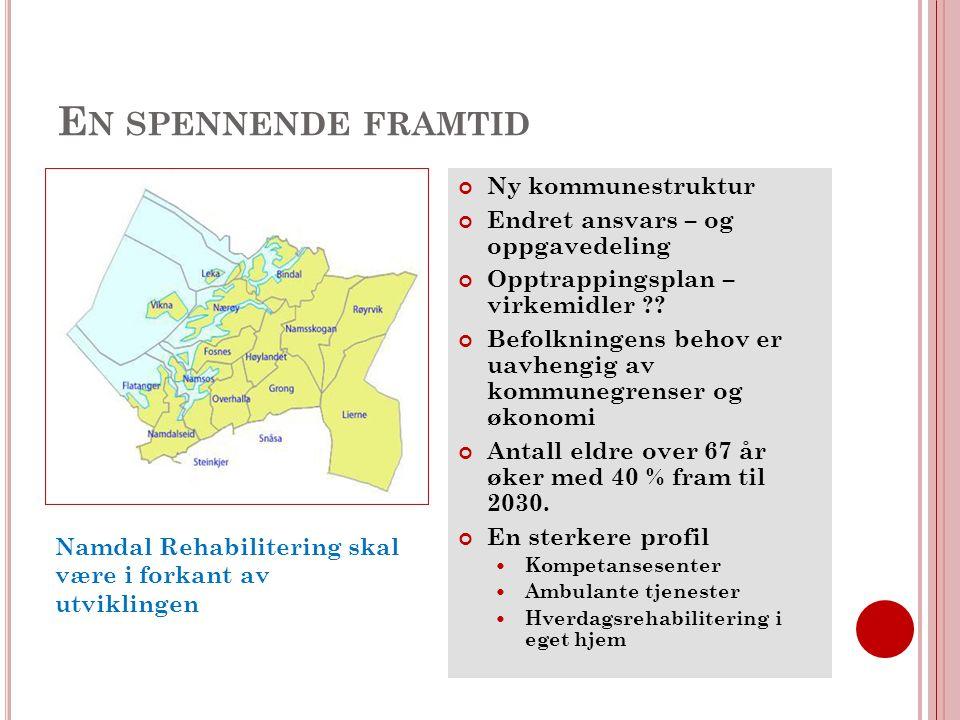 E N SPENNENDE FRAMTID Ny kommunestruktur Endret ansvars – og oppgavedeling Opptrappingsplan – virkemidler .