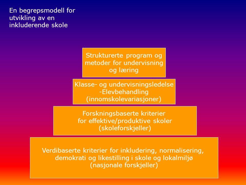 Verdibaserte kriterier for inkludering, normalisering, demokrati og likestilling i skole og lokalmiljø (nasjonale forskjeller) Forskningsbaserte kriterier for effektive/produktive skoler (skoleforskjeller) Klasse- og undervisningsledelse -Elevbehandling (innomskolevariasjoner) Strukturerte program og metoder for undervisning og læring En begrepsmodell for utvikling av en inkluderende skole