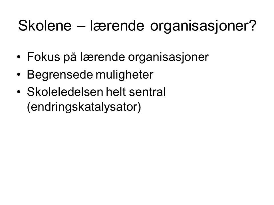 Skolene – lærende organisasjoner.