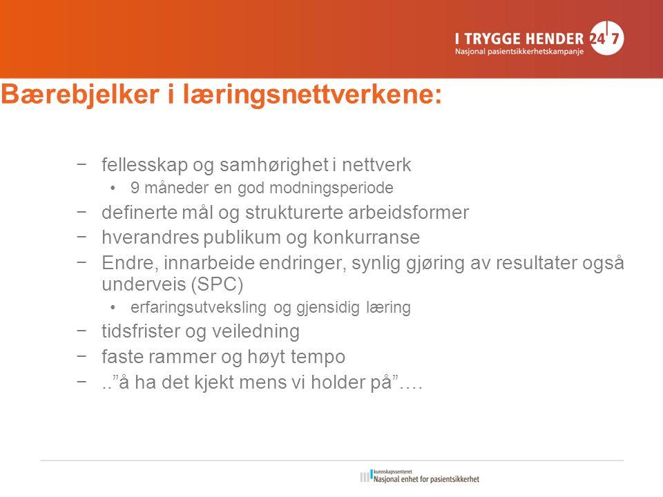 Bærebjelker i læringsnettverkene: −fellesskap og samhørighet i nettverk 9 måneder en god modningsperiode −definerte mål og strukturerte arbeidsformer
