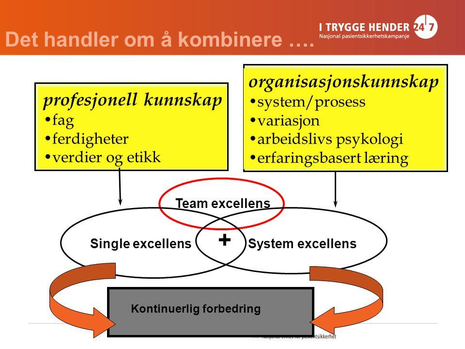 profesjonell kunnskap fag ferdigheter verdier og etikk organisasjonskunnskap system/prosess variasjon arbeidslivs psykologi erfaringsbasert læring Sin