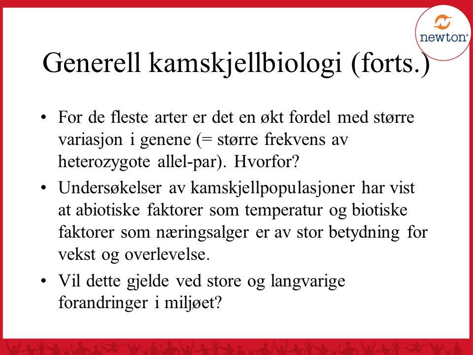 Generell kamskjellbiologi (forts.) For de fleste arter er det en økt fordel med større variasjon i genene (= større frekvens av heterozygote allel-par
