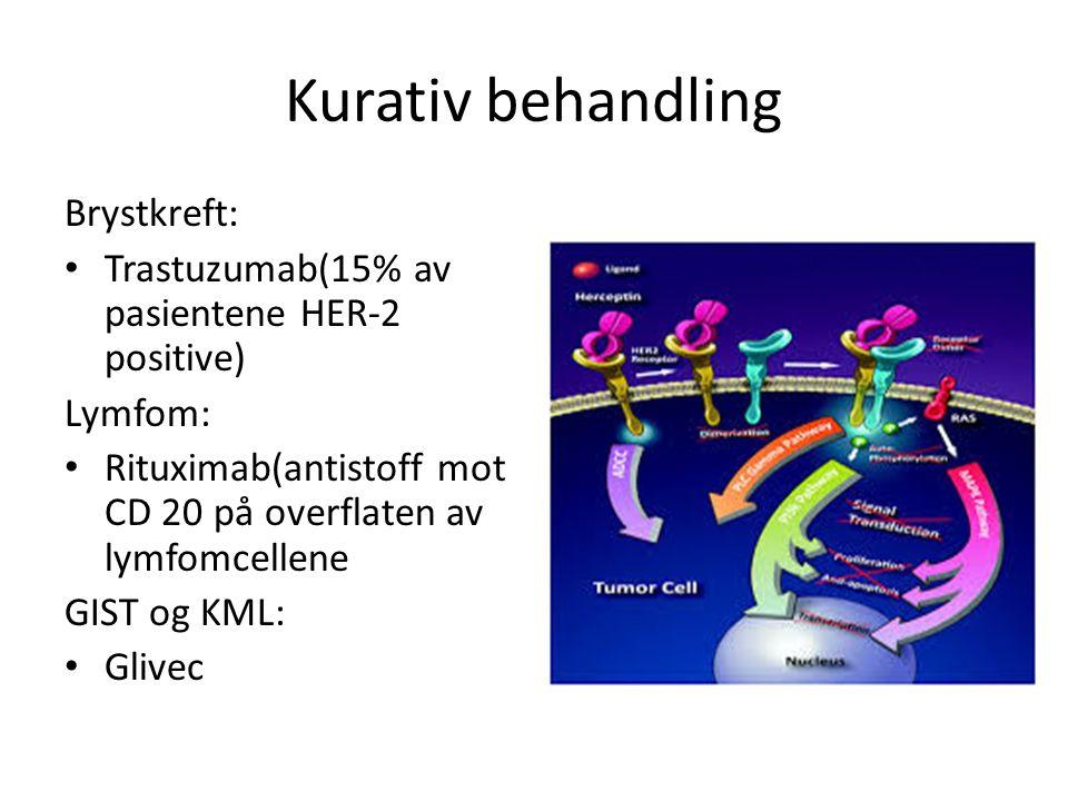 Kurativ behandling Brystkreft: Trastuzumab(15% av pasientene HER-2 positive) Lymfom: Rituximab(antistoff mot CD 20 på overflaten av lymfomcellene GIST og KML: Glivec