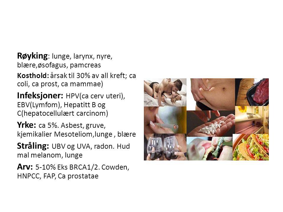 Røyking : lunge, larynx, nyre, blære,øsofagus, pamcreas Kosthold: årsak til 30% av all kreft; ca coli, ca prost, ca mammae) Infeksjoner: HPV(ca cerv uteri), EBV(Lymfom), Hepatitt B og C(hepatocellulært carcinom) Yrke: ca 5%.