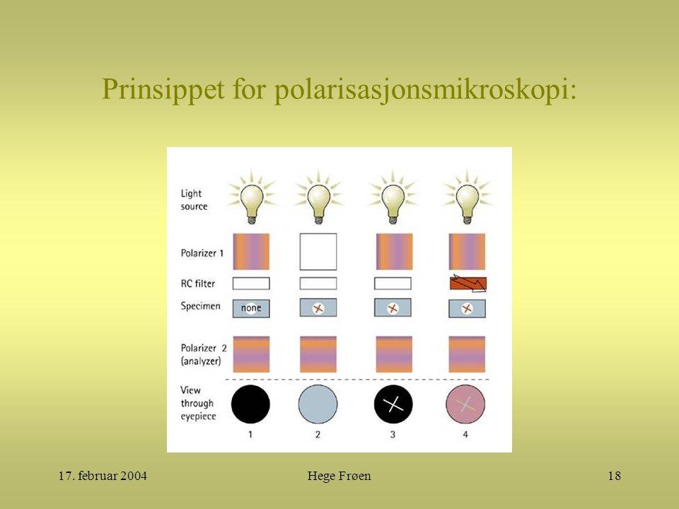 17. februar 2004Hege Frøen18 Prinsippet for polarisasjonsmikroskopi: