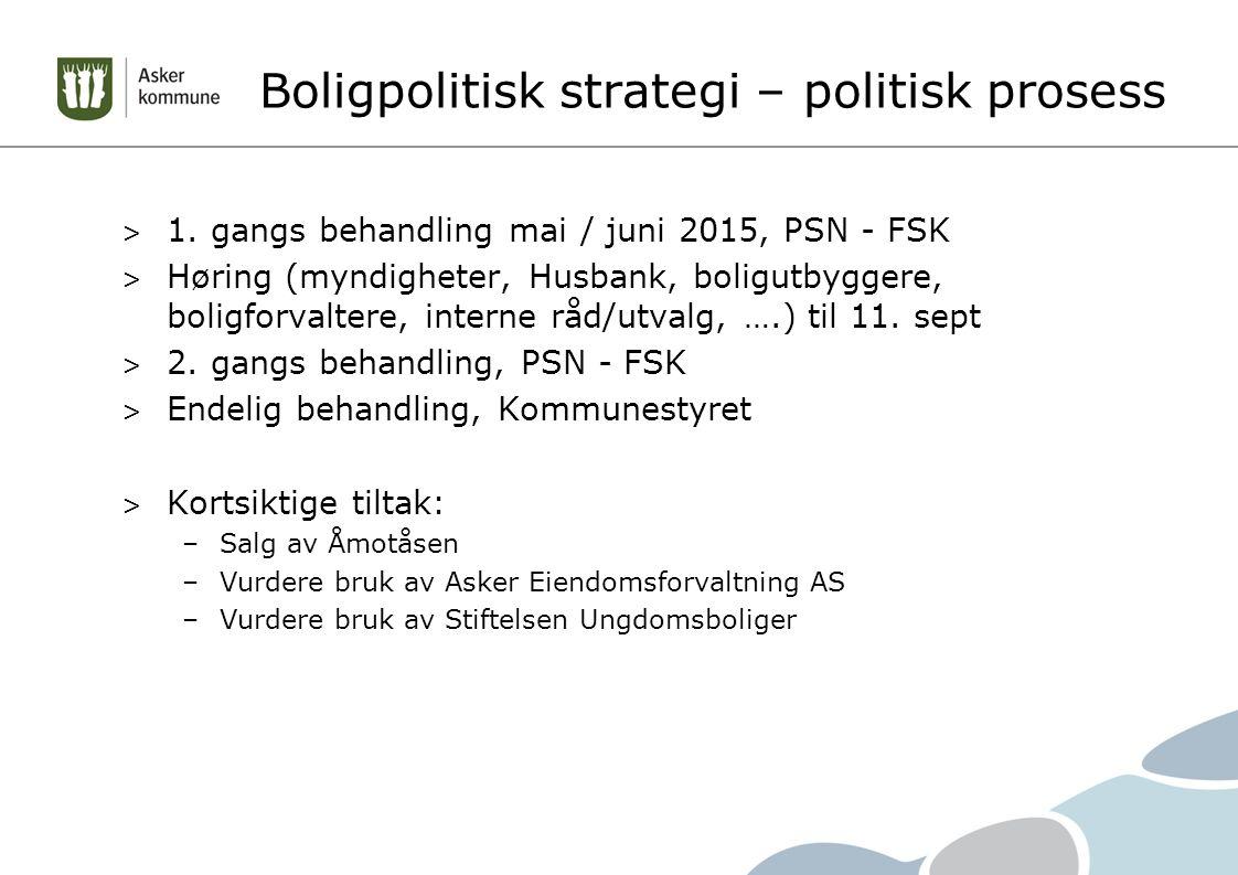 Boligpolitisk strategi – politisk prosess > 1.