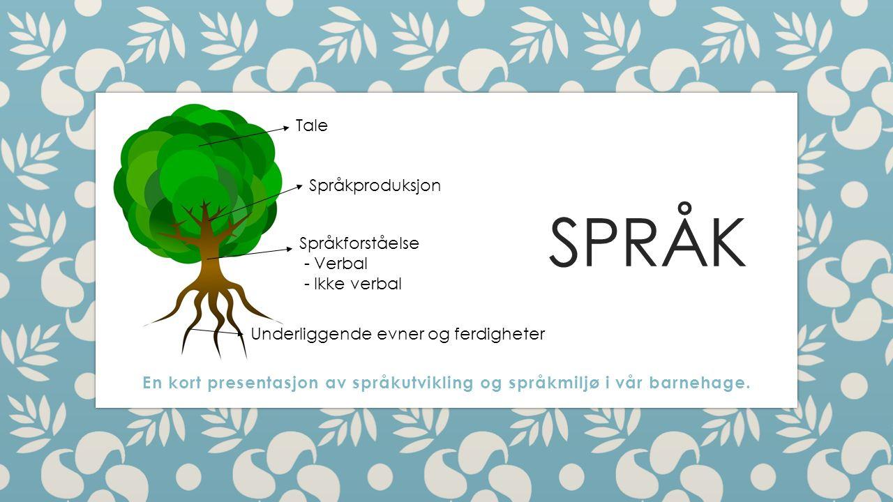 SPRÅK En kort presentasjon av språkutvikling og språkmiljø i vår barnehage.