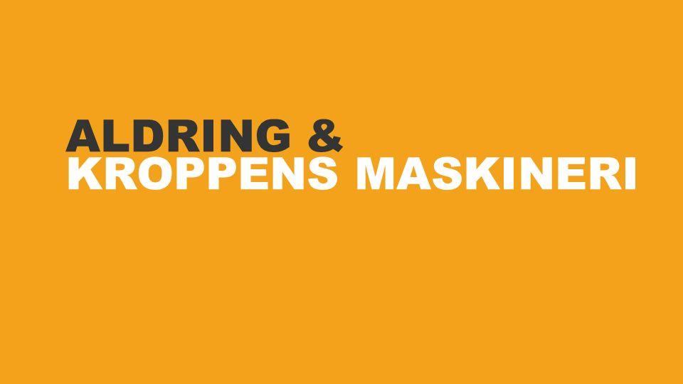 ALDRING & KROPPENS MASKINERI