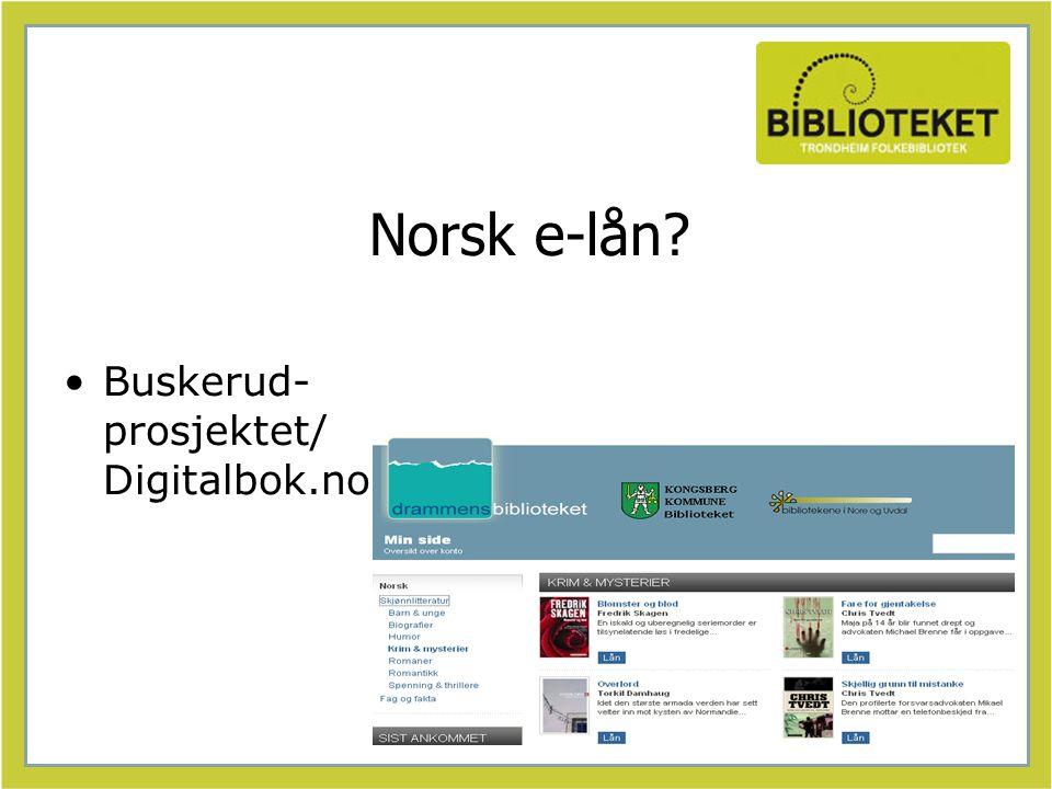 Norsk e-lån? Buskerud- prosjektet/ Digitalbok.no