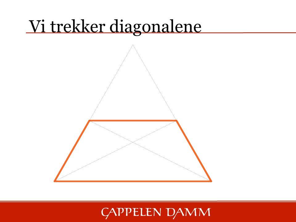 Vi trekker diagonalene