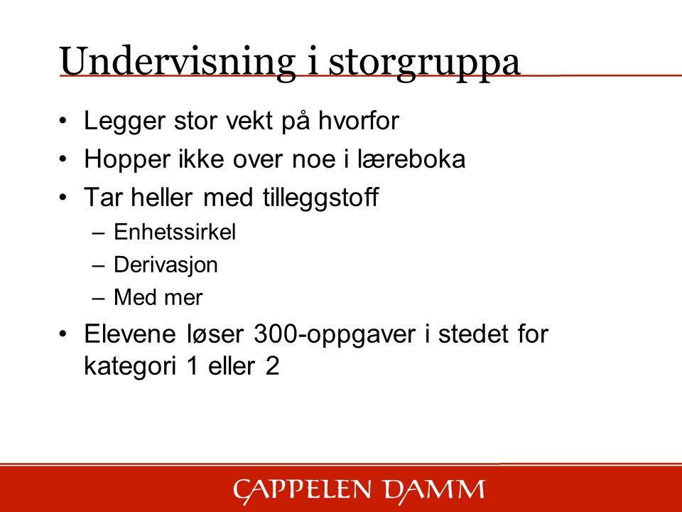 Undervisning i storgruppa Legger stor vekt på hvorfor Hopper ikke over noe i læreboka Tar heller med tilleggstoff –Enhetssirkel –Derivasjon –Med mer Elevene løser 300-oppgaver i stedet for kategori 1 eller 2