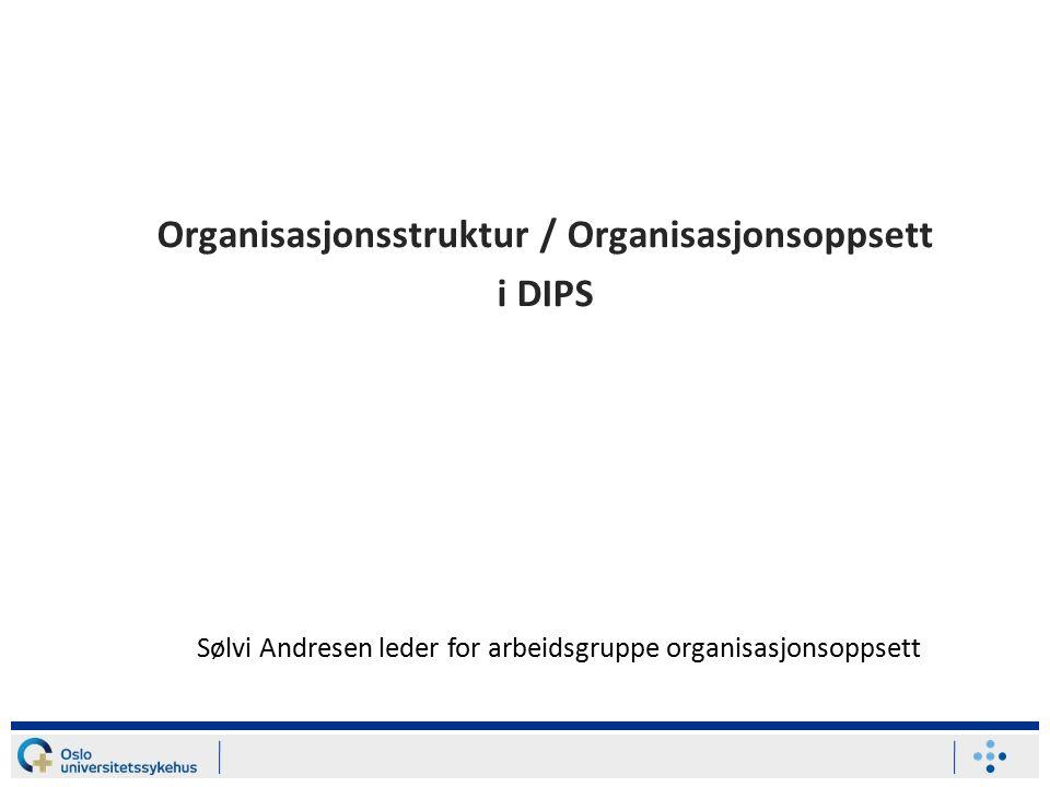 Organisasjonsstruktur / Organisasjonsoppsett i DIPS Sølvi Andresen leder for arbeidsgruppe organisasjonsoppsett